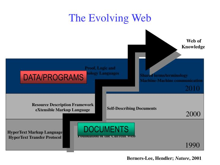 Web of
