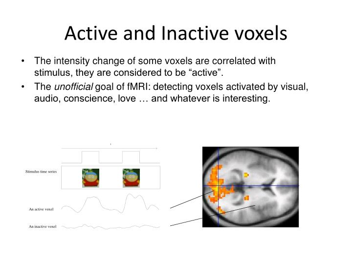 Active and Inactive voxels