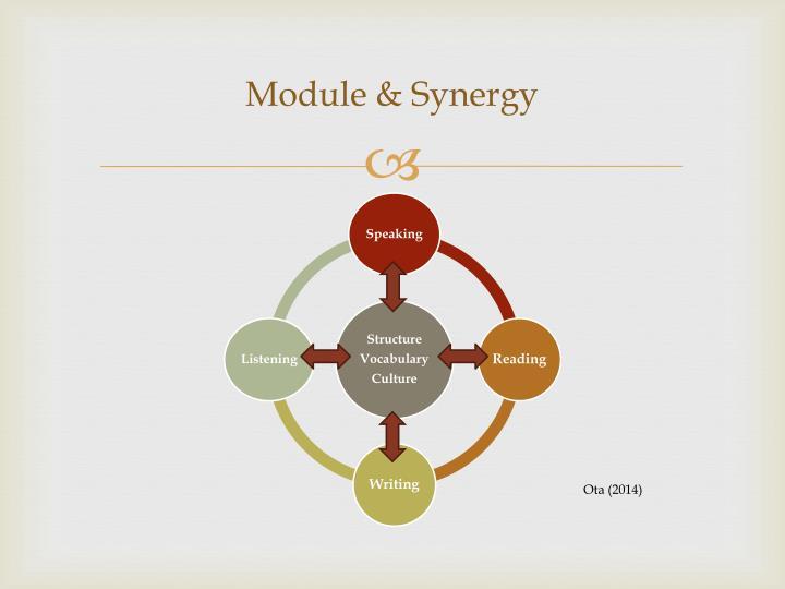 Module & Synergy