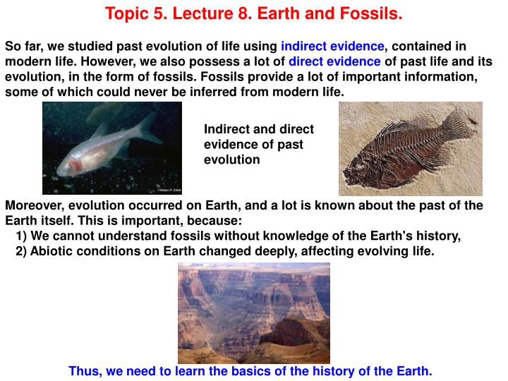 Topic 5. Lecture 8. Earth and Fossils.