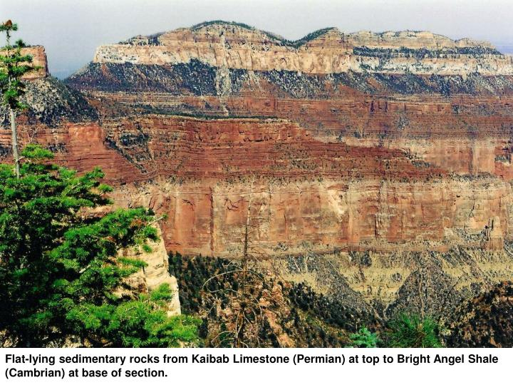 Flat-lying sedimentary rocks from Kaibab Limestone (Permian) at top to Bright Angel Shale (Cambrian) at base of section.