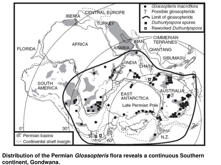 Distribution of the Permian