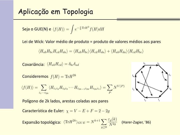 Aplicação em Topologia
