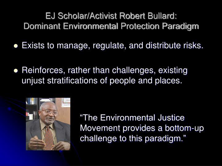 EJ Scholar/Activist Robert