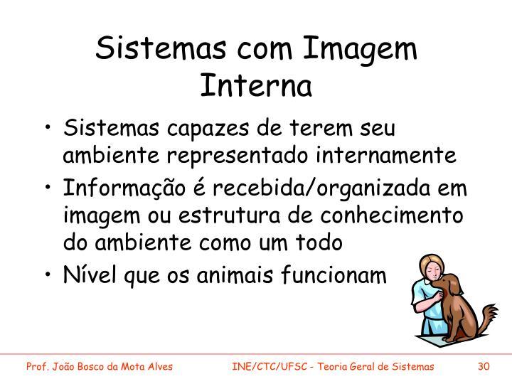 Sistemas com Imagem Interna
