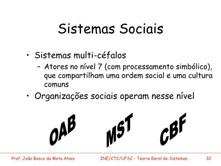 Sistemas Sociais