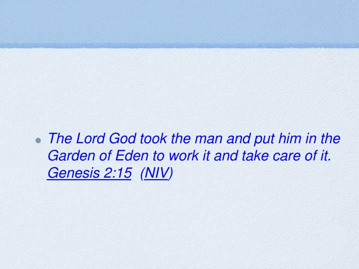 The Lord God took the man and put him in the Garden of Eden to work it and take care of it.