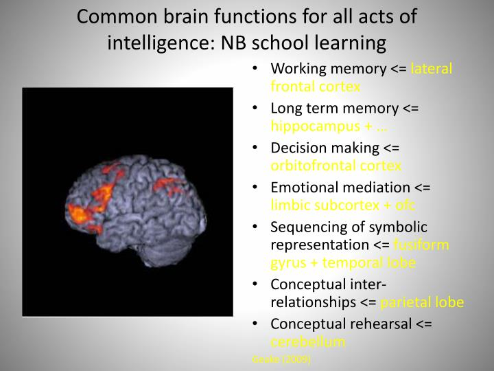 Common brain functions for all acts of intelligence: NB school learning