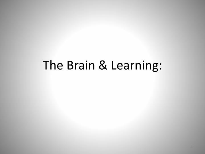 The Brain & Learning: