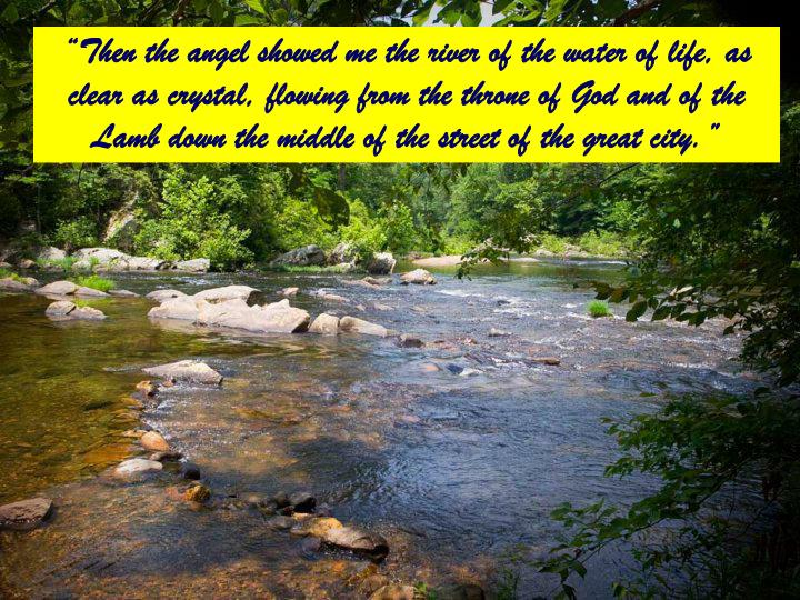 """Then the angel showed me the river of the water of life, as clear as crystal, flowing from the throne of God and of the Lamb down the middle of the street of the great city."""