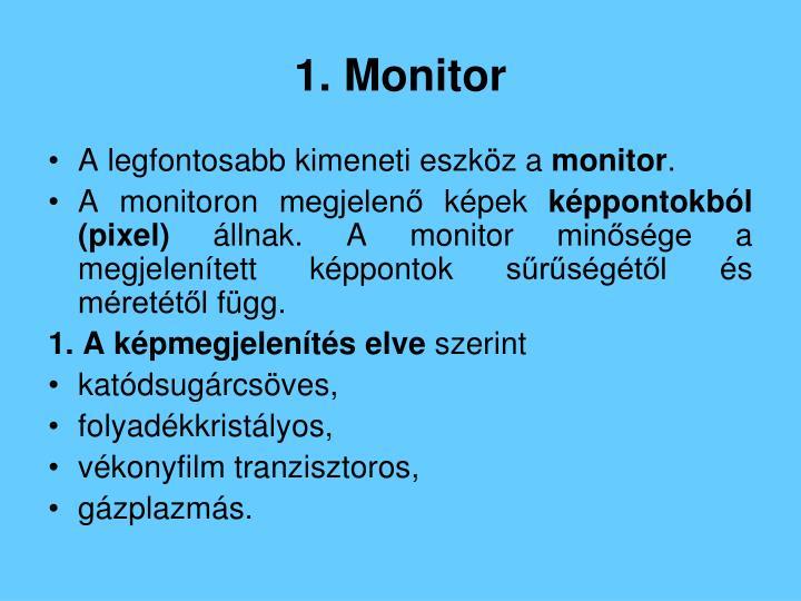 1. Monitor