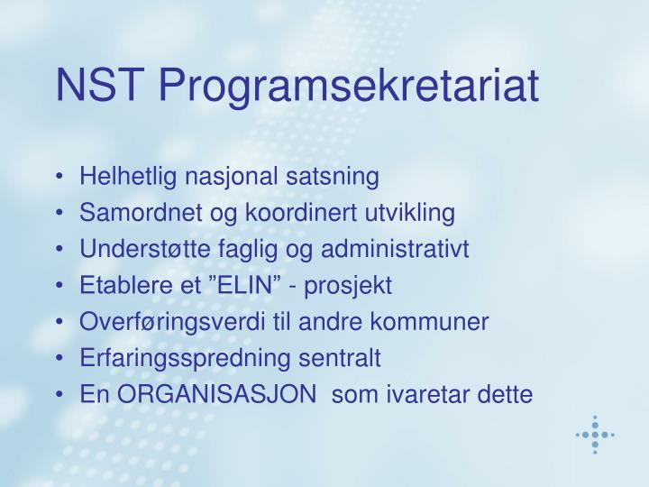 NST Programsekretariat