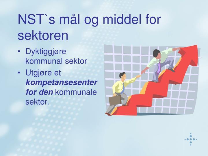 NST`s mål og middel for sektoren