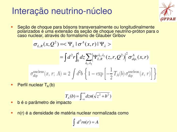 Interação neutrino-núcleo