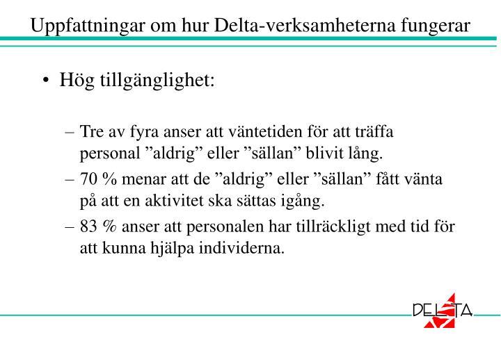 Uppfattningar om hur Delta-verksamheterna fungerar
