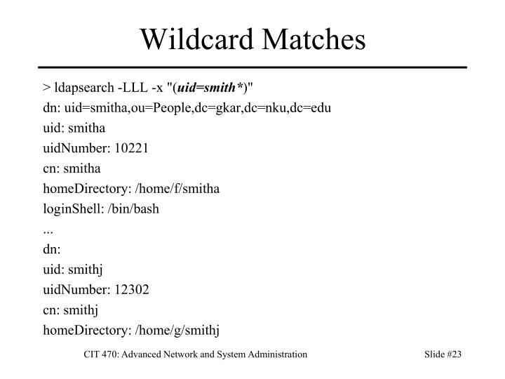 Wildcard Matches