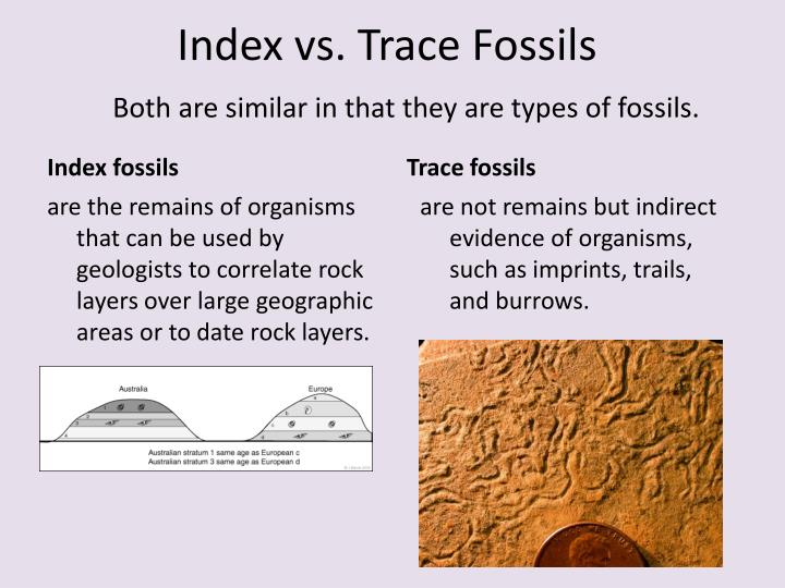 different types of dating fossils and rocks