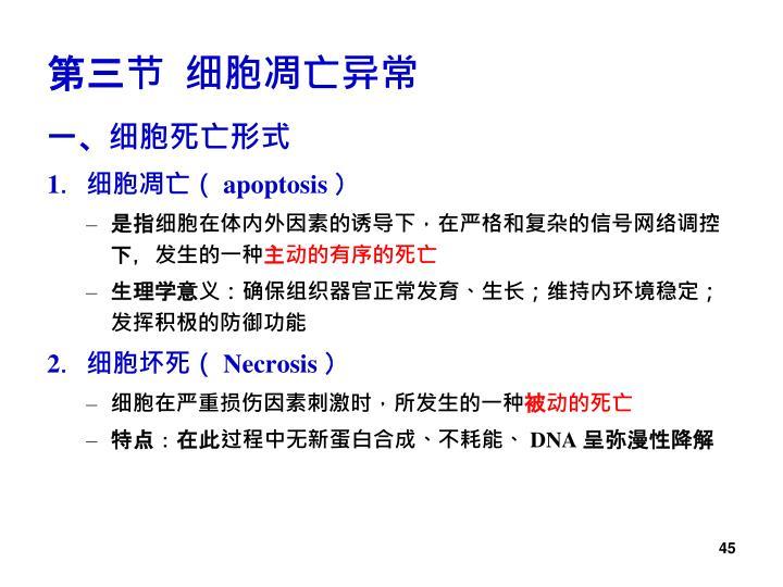 第三节  细胞凋亡异常