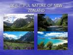 beautiful nature of new zealand