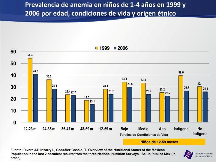 Prevalencia de anemia en niños de 1-4 años en 1999 y 2006 por edad, condiciones de vida y origen étnico