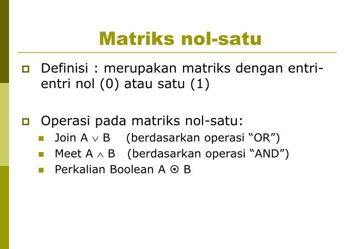 Matriks nol-satu