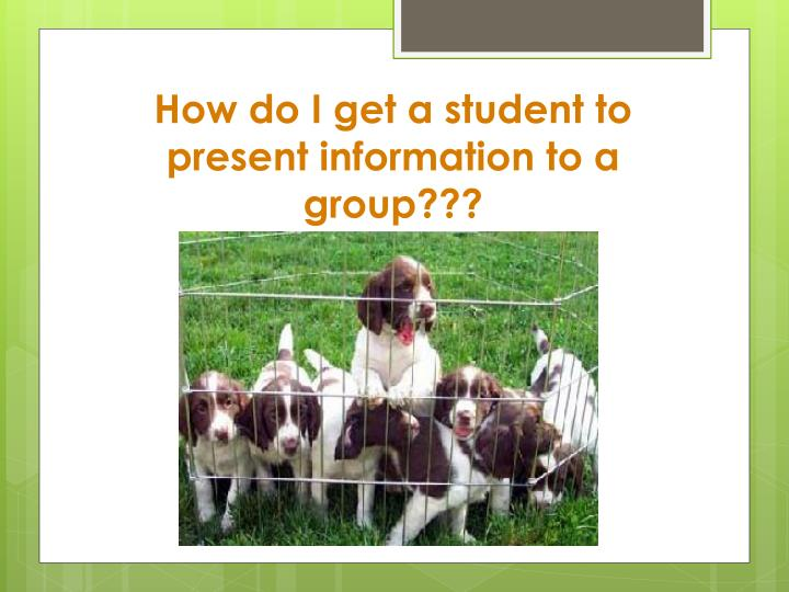 How do I get a student to present information to a group???