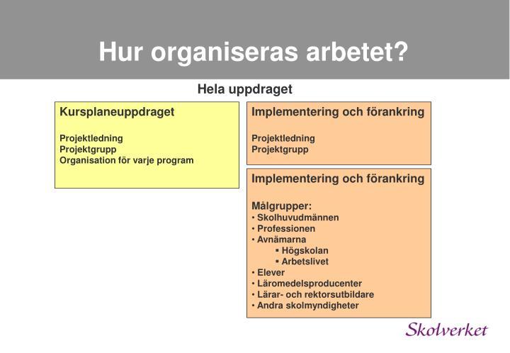 Hur organiseras arbetet?