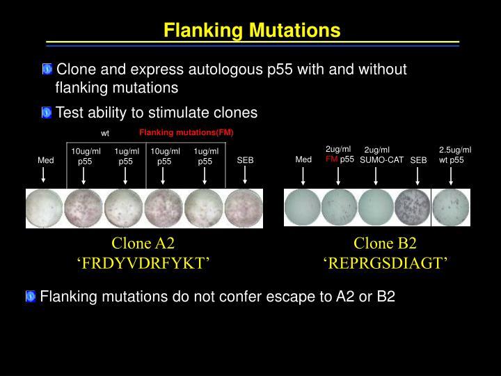 Flanking Mutations