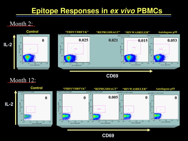 Epitope Responses in