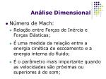 an lise dimensional8