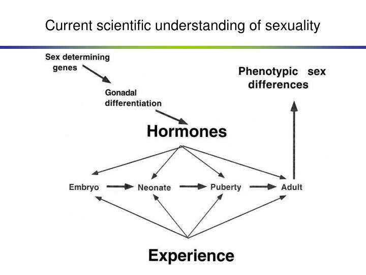 Current scientific understanding of sexuality