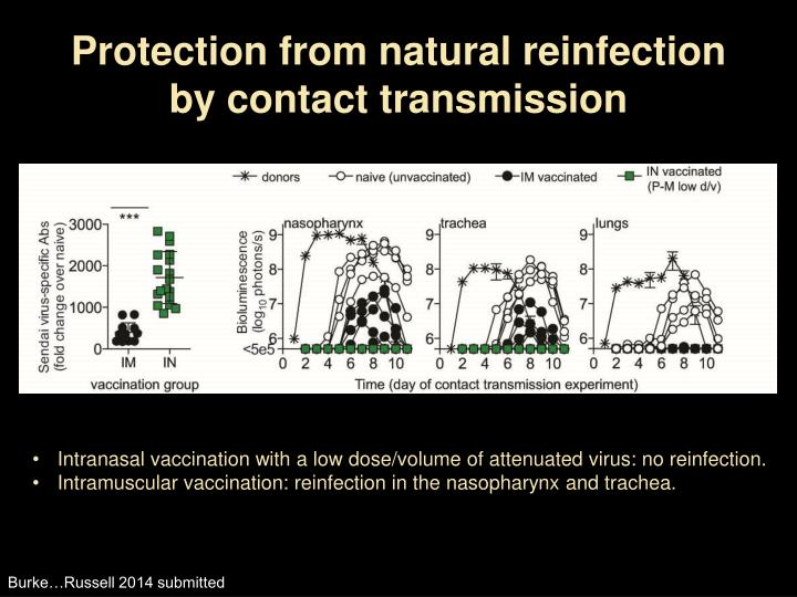 Protection from natural reinfection by contact transmission