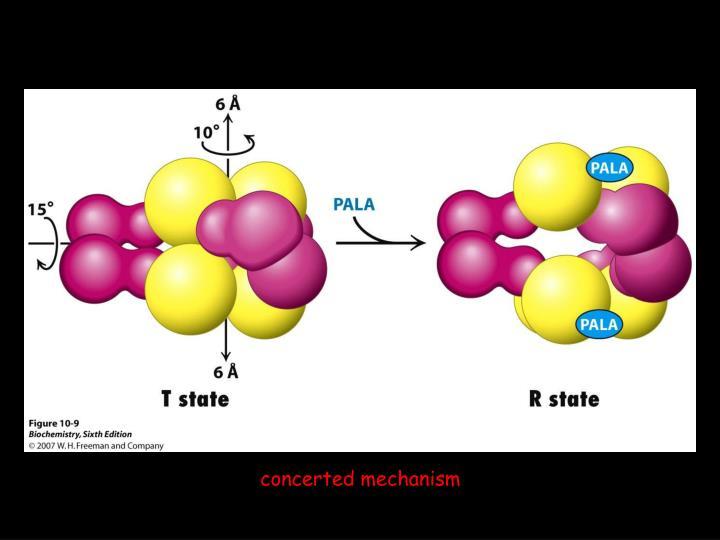 concerted mechanism