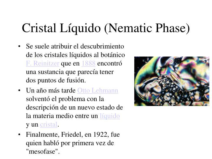 Cristal Líquido (Nematic Phase)