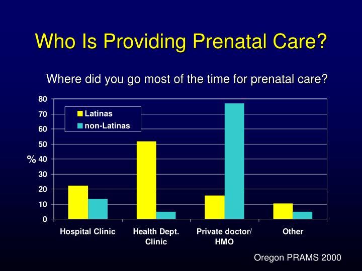 Who Is Providing Prenatal Care?