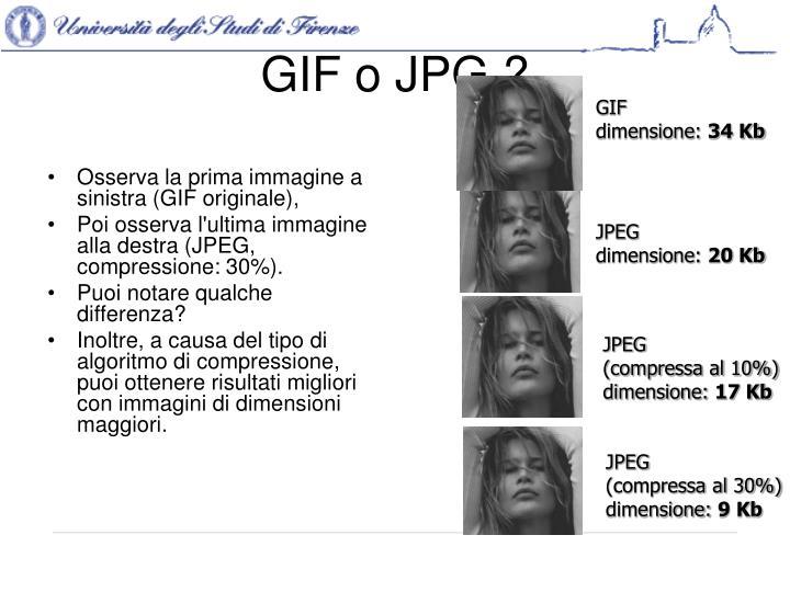 GIF o JPG ?