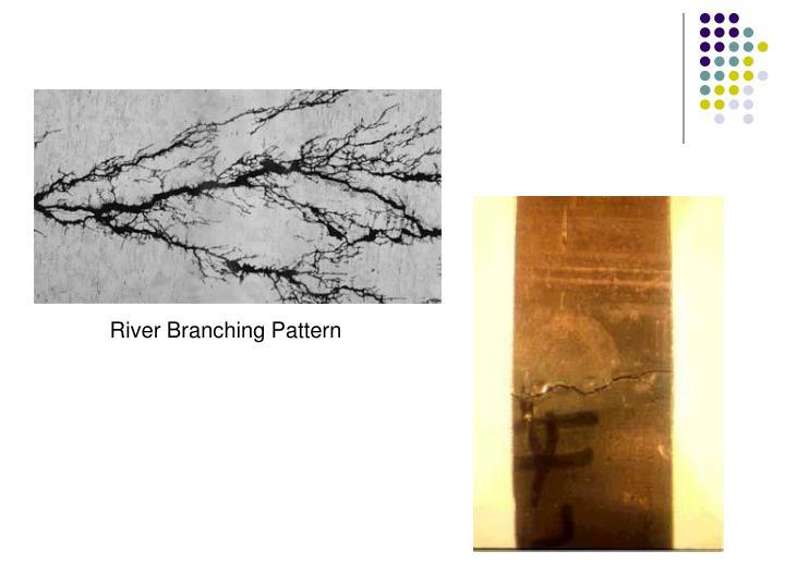 River Branching Pattern