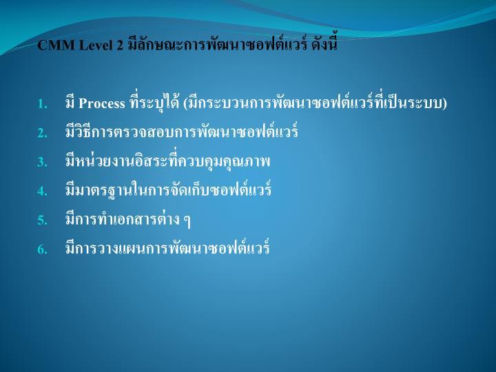 CMM Level 2