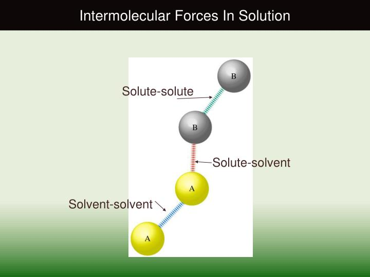 Intermolecular Forces In Solution