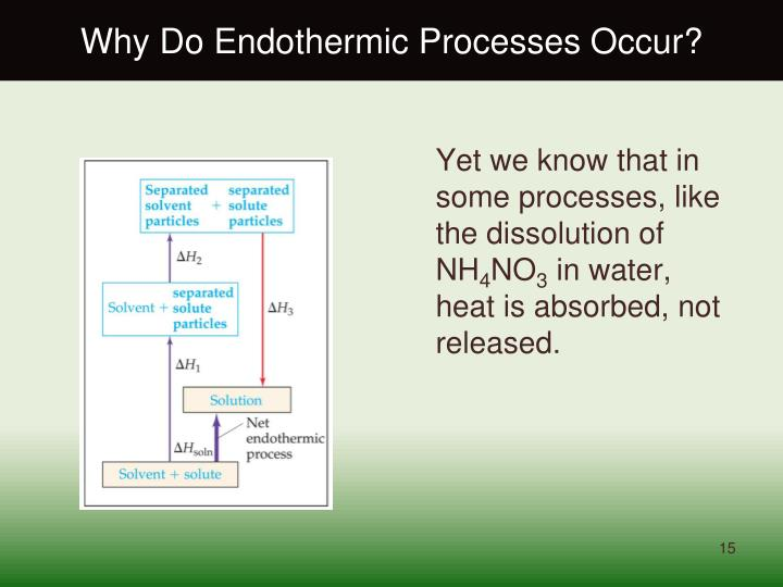 Why Do Endothermic Processes Occur?