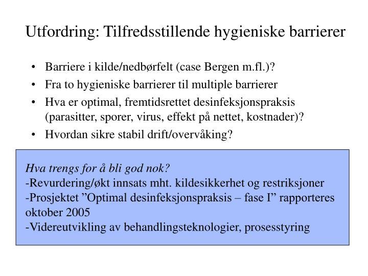 Utfordring: Tilfredsstillende hygieniske barrierer