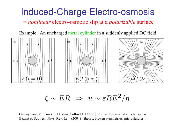 Induced-Charge Electro-osmosis