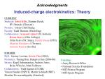 induced charge electrokinetics theory