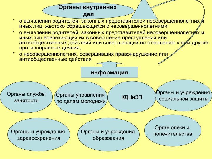 Органы внутренних