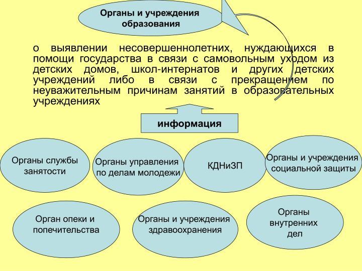 Органы и учреждения