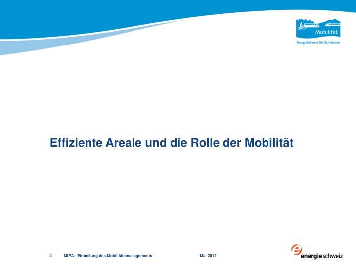 Effiziente Areale und die Rolle der Mobilität