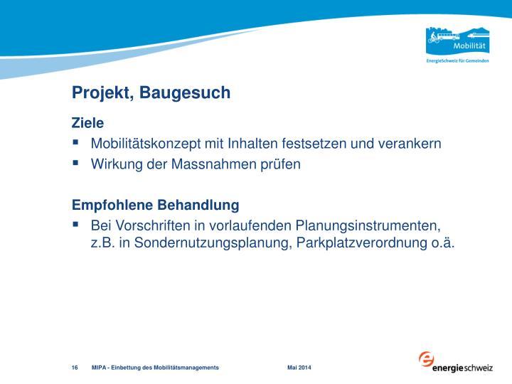 Projekt, Baugesuch