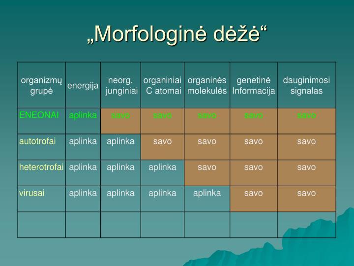 """""""Morfologinė dėžė"""""""