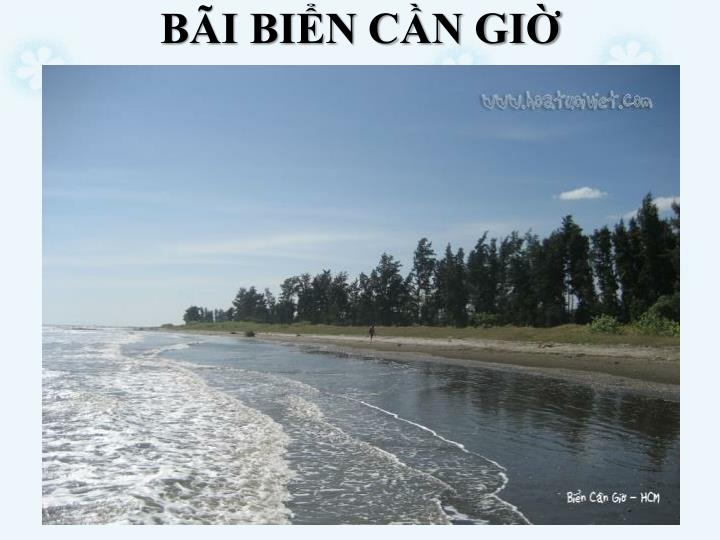 BI BIN CN GI