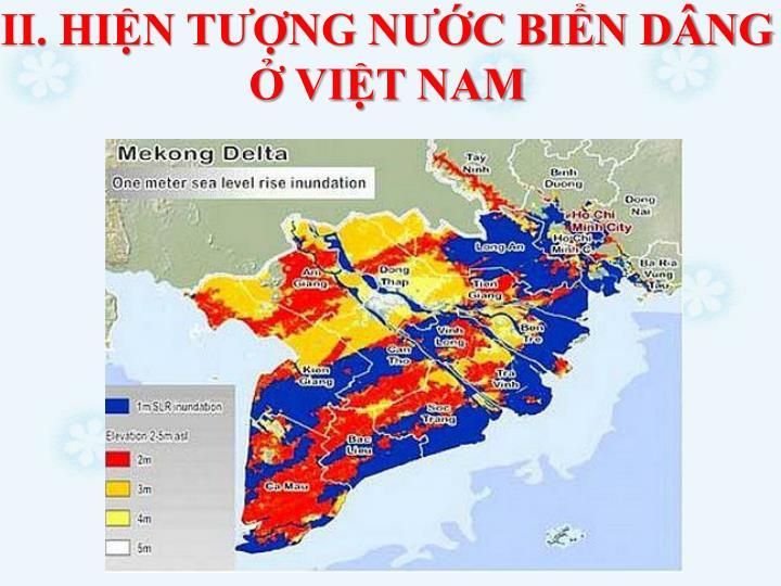 II. HIN TNG NC BIN DNG  VIT NAM